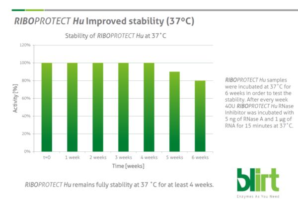 Stabilność temperaturowa Inhibitora RNaz - RiboProtect