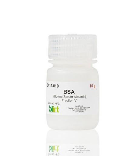 BSA EN17-10